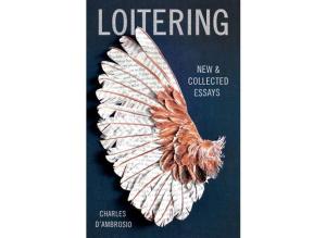 books_loitering.widea