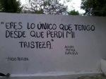 Chilean poet