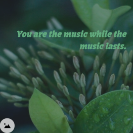 music while the music lasts